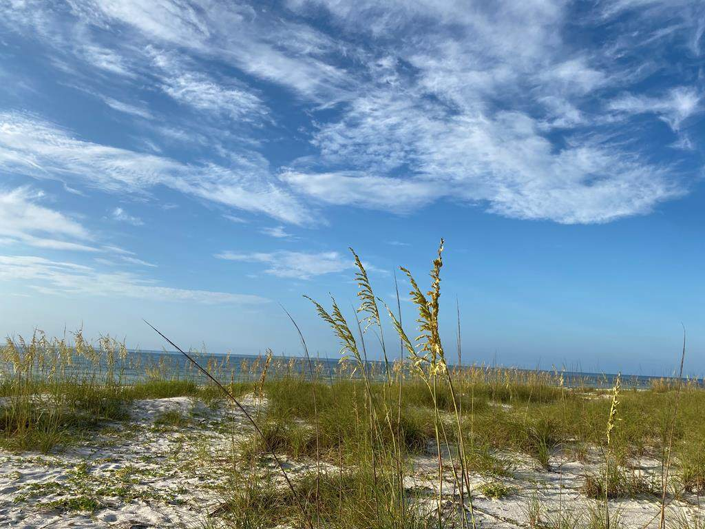 373 Gulf Shore Dr - Photo 1