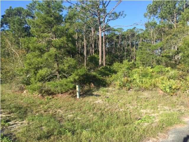 170 Shadow Bay Dr, EASTPOINT, FL 32328 (MLS #306979) :: Berkshire Hathaway HomeServices Beach Properties of Florida