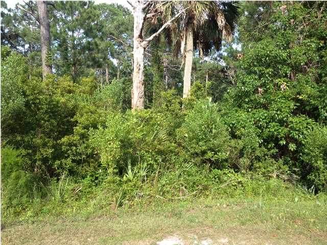 135 Craig St, CARRABELLE, FL 32322 (MLS #307108) :: The Naumann Group Real Estate, Coastal Office