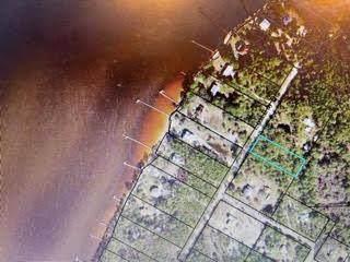354 E Bay Dr, EASTPOINT, FL 32328 (MLS #307256) :: The Naumann Group Real Estate, Coastal Office