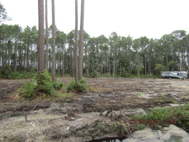 3015 Hwy 98 E, CARRABELLE, FL 32322 (MLS #307335) :: The Naumann Group Real Estate, Coastal Office