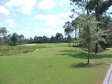 152 White Pelican Way, CARRABELLE, FL 32323 (MLS #307356) :: The Naumann Group Real Estate, Coastal Office