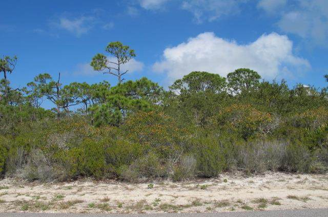 1608 Ivy Way, ST. GEORGE ISLAND, FL 32328 (MLS #307464) :: Anchor Realty Florida