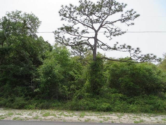 146 Franklin St, CARRABELLE, FL 32322 (MLS #307657) :: The Naumann Group Real Estate, Coastal Office