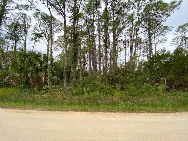 320 Howell St, ST. GEORGE ISLAND, FL 32328 (MLS #307686) :: Berkshire Hathaway HomeServices Beach Properties of Florida