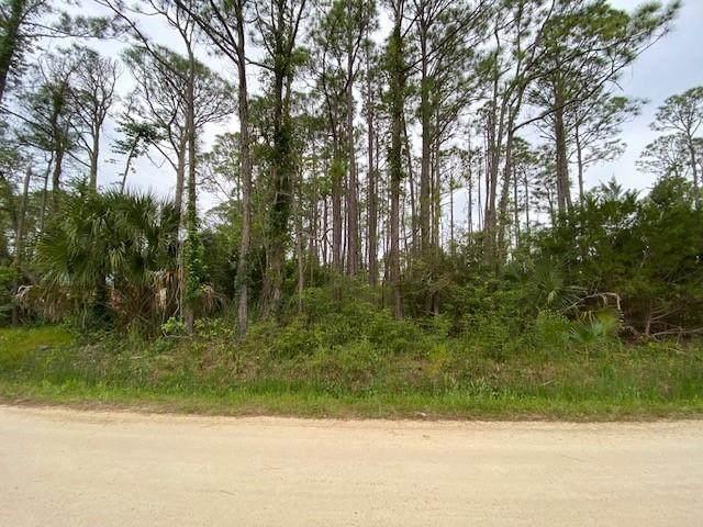 320 Howell St, ST. GEORGE ISLAND, FL 32328 (MLS #307686) :: The Naumann Group Real Estate, Coastal Office