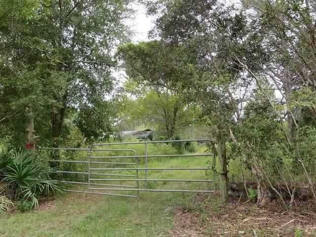 780B Hickory Hammock Rd, CARRABELLE, FL 32322 (MLS #307817) :: The Naumann Group Real Estate, Coastal Office