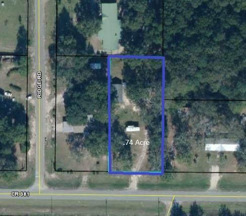 349 Cr 381, WEWAHITCHKA, FL 32465 (MLS #308187) :: The Naumann Group Real Estate, Coastal Office