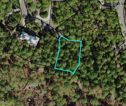 162 Oak Dune Ln, CARRABELLE, FL 32323 (MLS #308188) :: Berkshire Hathaway HomeServices Beach Properties of Florida