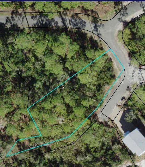 142 Marshmallow Ln, CARRABELLE, FL 32323 (MLS #308192) :: Anchor Realty Florida