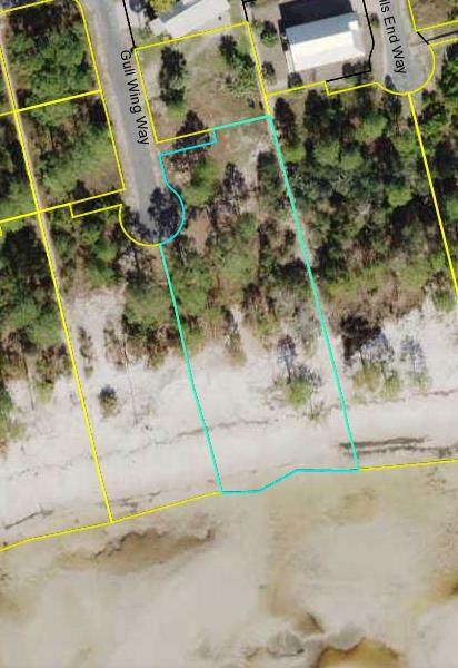 309 Gullwing Way, CARRABELLE, FL 32323 (MLS #308274) :: Anchor Realty Florida
