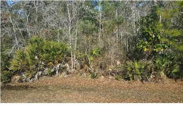 147 Water Oaks Way, APALACHICOLA, FL 32320 (MLS #308480) :: Anchor Realty Florida