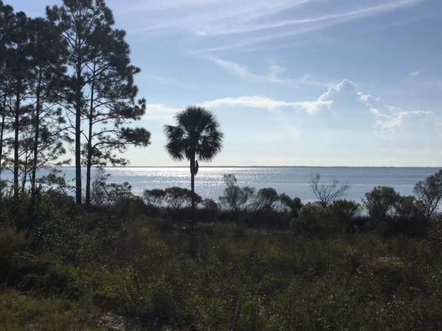 2796 Hwy 98 E, CARRABELLE, FL 32322 (MLS #308521) :: The Naumann Group Real Estate, Coastal Office