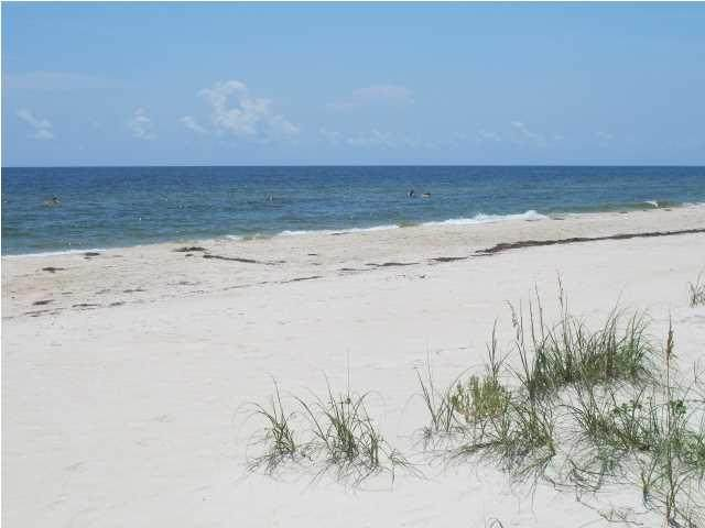 1016 E Gorrie Dr, ST. GEORGE ISLAND, FL 32328 (MLS #308583) :: Anchor Realty Florida