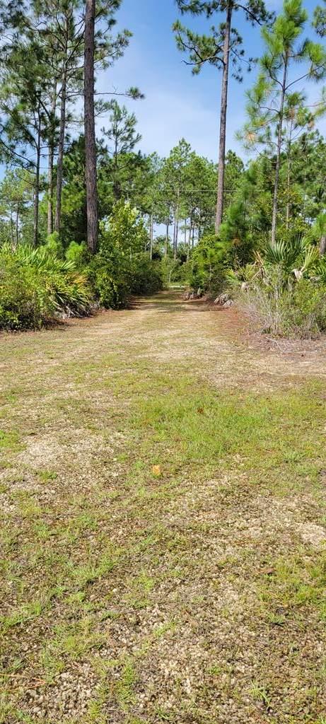 138 Palm Breeze Way, PORT ST. JOE, FL 32456 (MLS #308885) :: Anchor Realty Florida