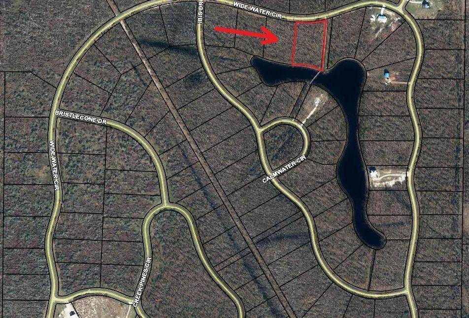 Lot 178 Wide Water Cir - Photo 1