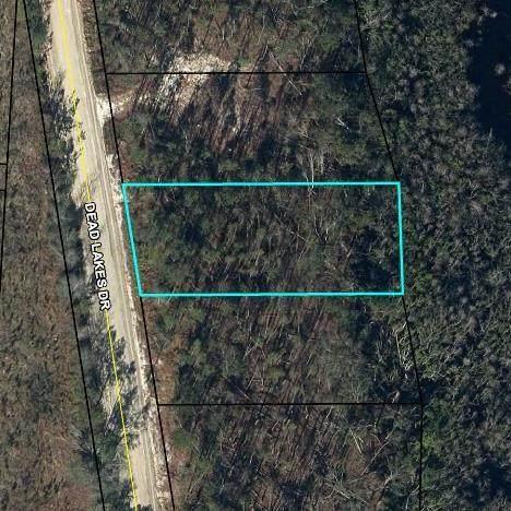 4 Dead Lakes Dr, WEWAHITCHKA, FL 32465 (MLS #309169) :: Anchor Realty Florida