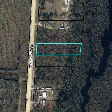 14 Dead Lakes Dr, WEWAHITCHKA, FL 32465 (MLS #309170) :: Anchor Realty Florida