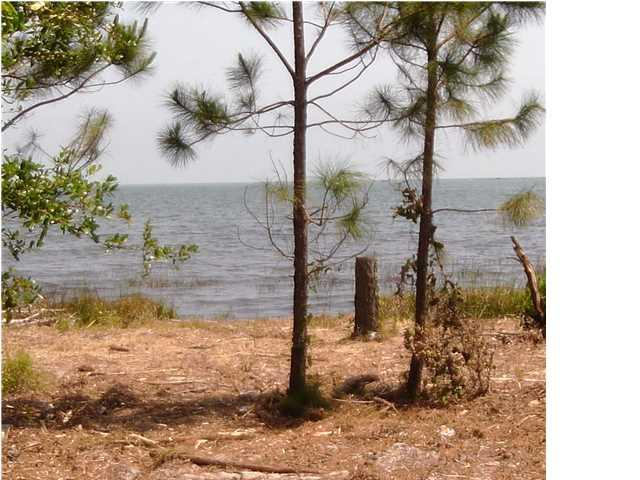 2412 Hwy 98, CARRABELLE, FL 32322 (MLS #247745) :: The Naumann Group Real Estate, Coastal Office