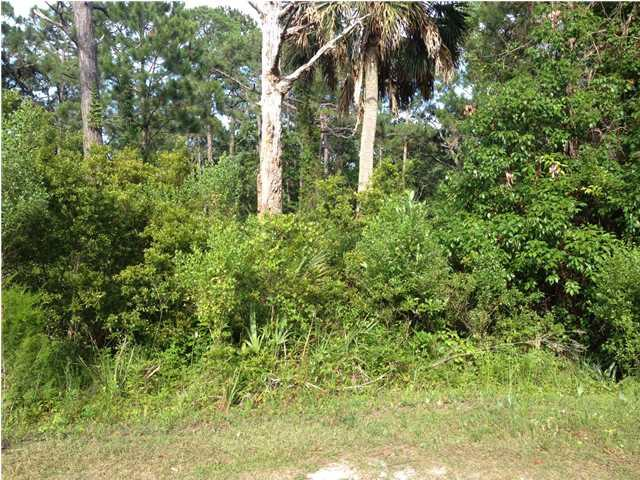 135 Craig St, CARRABELLE, FL 32322 (MLS #254337) :: Coastal Realty Group
