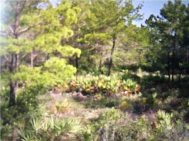 226 Woodill Rd, CARRABELLE, FL 32322 (MLS #258772) :: Coast Properties