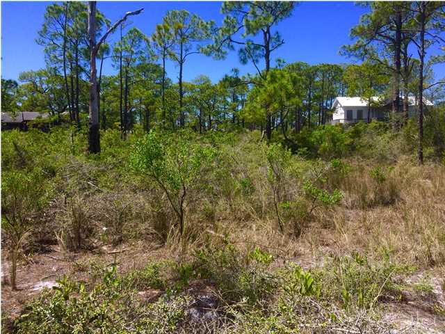 147 Boaters Rd, CARRABELLE, FL 32322 (MLS #259115) :: Coastal Realty Group