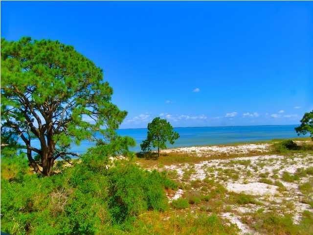 665 Bayside Dr., CARRABELLE, FL 32322 (MLS #259493) :: Coastal Realty Group