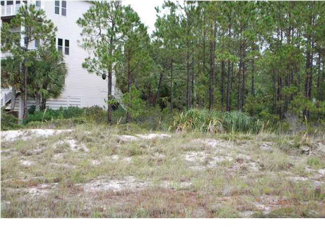 185 Watermark Way, PORT ST. JOE, FL 32456 (MLS #259830) :: Coast Properties