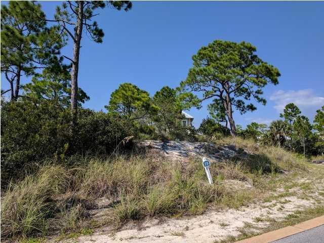 431 Jubilation Dr, CAPE SAN BLAS, FL 32456 (MLS #260174) :: Coast Properties