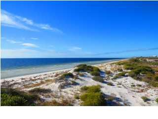 716 Gulf Shore Dr, CARRABELLE, FL 32322 (MLS #261356) :: Berkshire Hathaway HomeServices Beach Properties of Florida