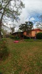 120 Griffin Rd, WEWAHITCHKA, FL 32465 (MLS #262726) :: Berkshire Hathaway HomeServices Beach Properties of Florida