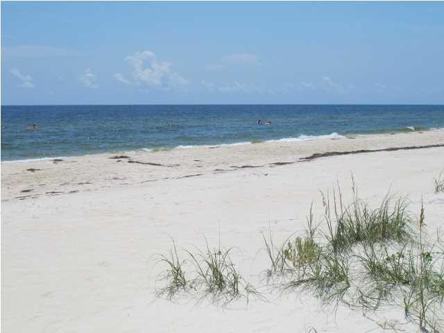 1016 East Gorrie Dr., ST. GEORGE ISLAND, FL 32328 (MLS #262859) :: Berkshire Hathaway HomeServices Beach Properties of Florida