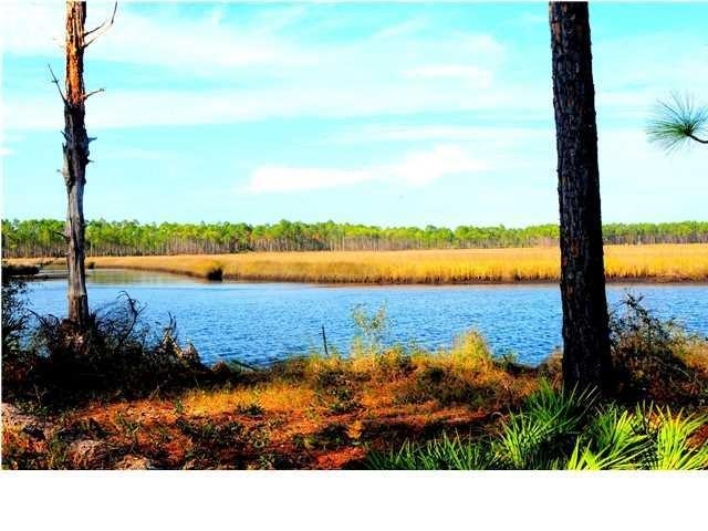340 Jay Jay Way, CARRABELLE, FL 32322 (MLS #301366) :: Coastal Realty Group