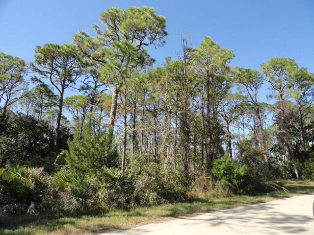 308 Howell St, ST. GEORGE ISLAND, FL 32328 (MLS #303241) :: CENTURY 21 Coast Properties
