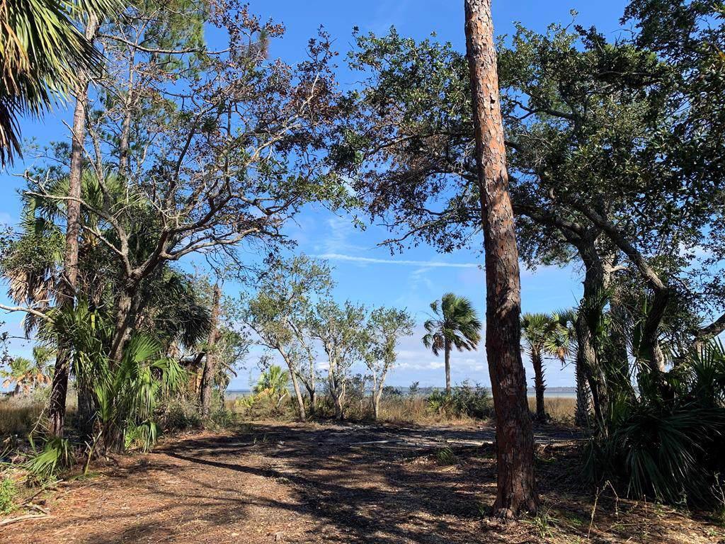 1131 Cape San Blas Rd - Photo 1