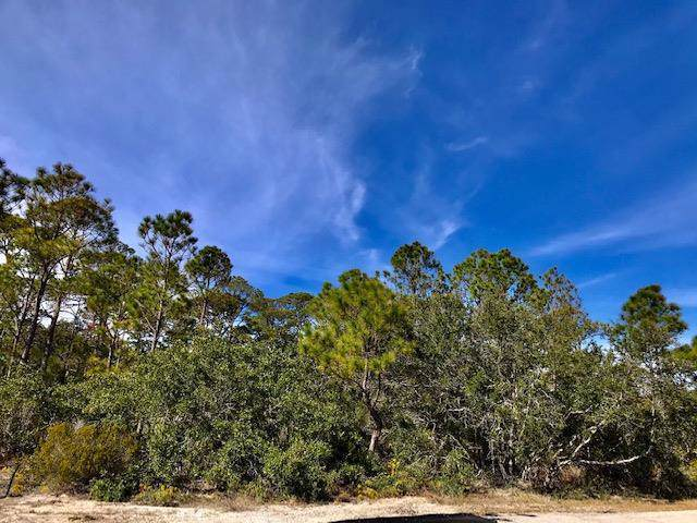 1648 Forsythia Ct, ST. GEORGE ISLAND, FL 32328 (MLS #303373) :: Coastal Realty Group