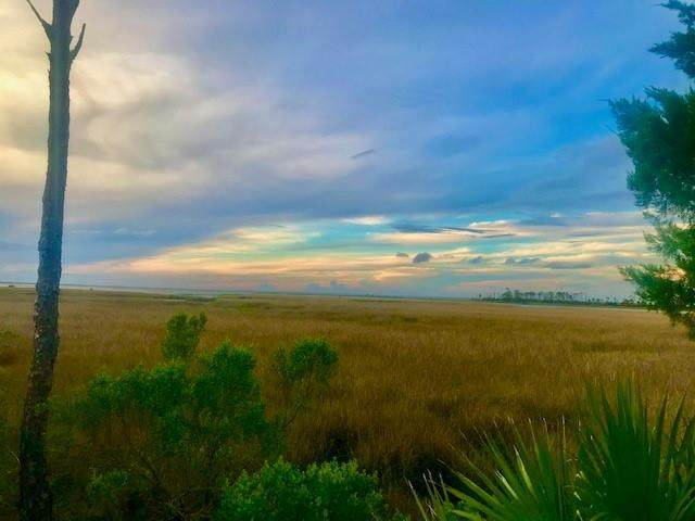 1623 Forsythia Trail, ST. GEORGE ISLAND, FL 32328 (MLS #305312) :: The Naumann Group Real Estate, Coastal Office