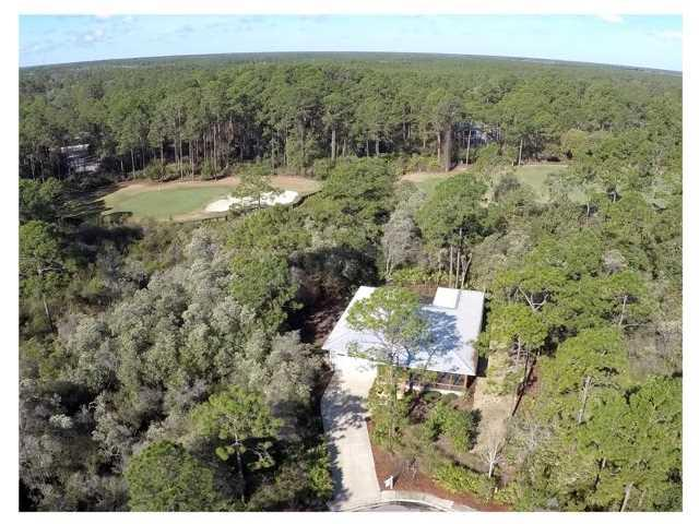 161 White Pelican Ct, CARRABELLE, FL 32322 (MLS #259886) :: Berkshire Hathaway HomeServices Beach Properties of Florida