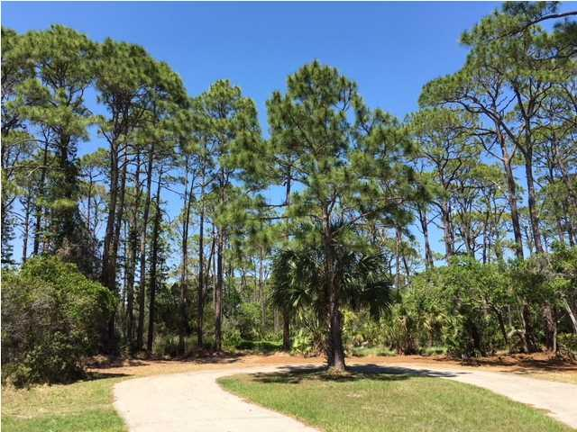 1615 Gannett Ct, ST. GEORGE ISLAND, FL 32328 (MLS #261901) :: Coast Properties