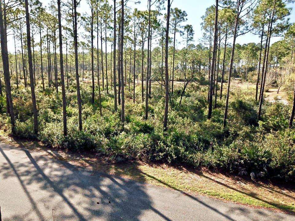 133 Winding Trail Way - Photo 1
