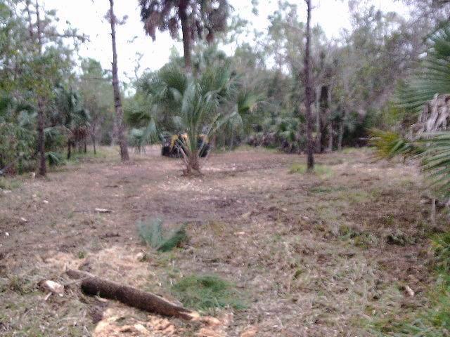 0 Union St, ST. MARKS, FL 32355 (MLS #303795) :: Coastal Realty Group