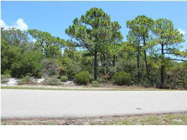 1408 Camellia Ct, ST. GEORGE ISLAND, FL 32328 (MLS #258849) :: Berkshire Hathaway HomeServices Beach Properties of Florida