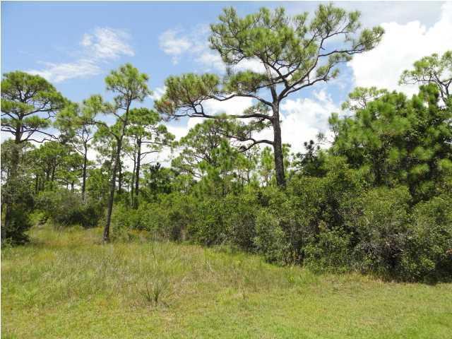 1843 Bayview Dr, ST. GEORGE ISLAND, FL 32328 (MLS #262915) :: CENTURY 21 Coast Properties