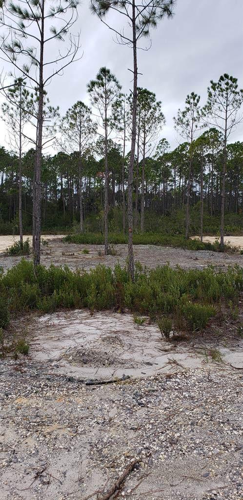 16 Shady Grove Ln, PORT ST. JOE, FL 32456 (MLS #262203) :: Coastal Realty Group