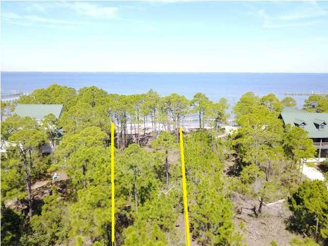 1441 Cutty Sark Way, ST. GEORGE ISLAND, FL 32328 (MLS #256591) :: Coast Properties