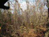 Black Oak Court - Photo 2