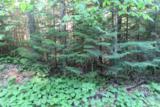 Birch Circle - Photo 1