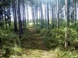 6944 Sundew Road - Photo 4
