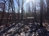 W788 Hidden Springs Drive - Photo 4