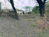 3444 Tarragon Trail - Photo 50